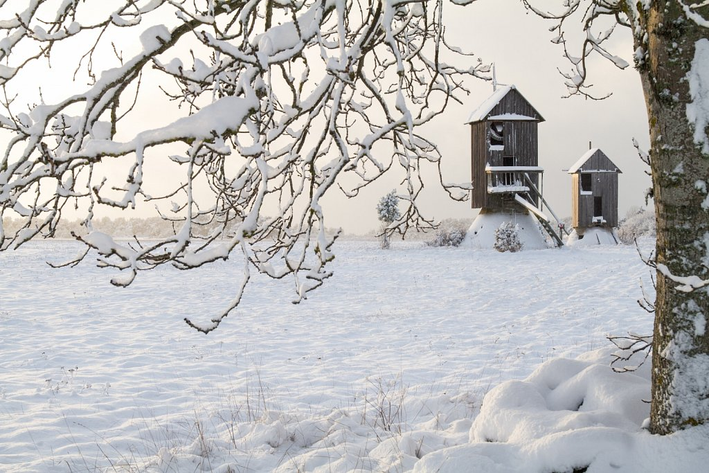 Lumine Vilsandi
